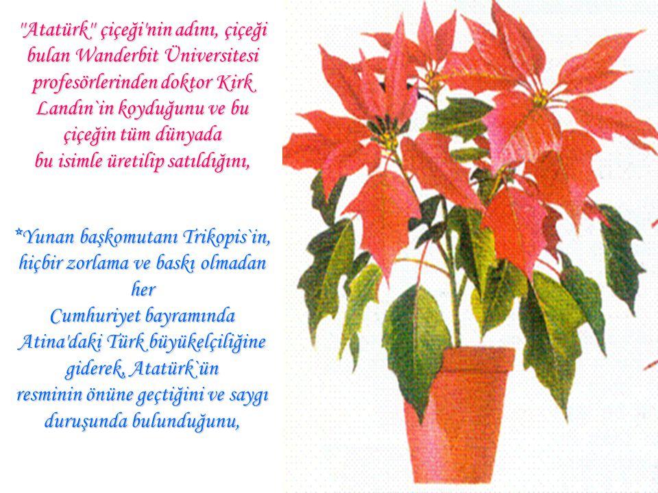 Atatürk çiçeği nin adını, çiçeği bulan Wanderbit Üniversitesi