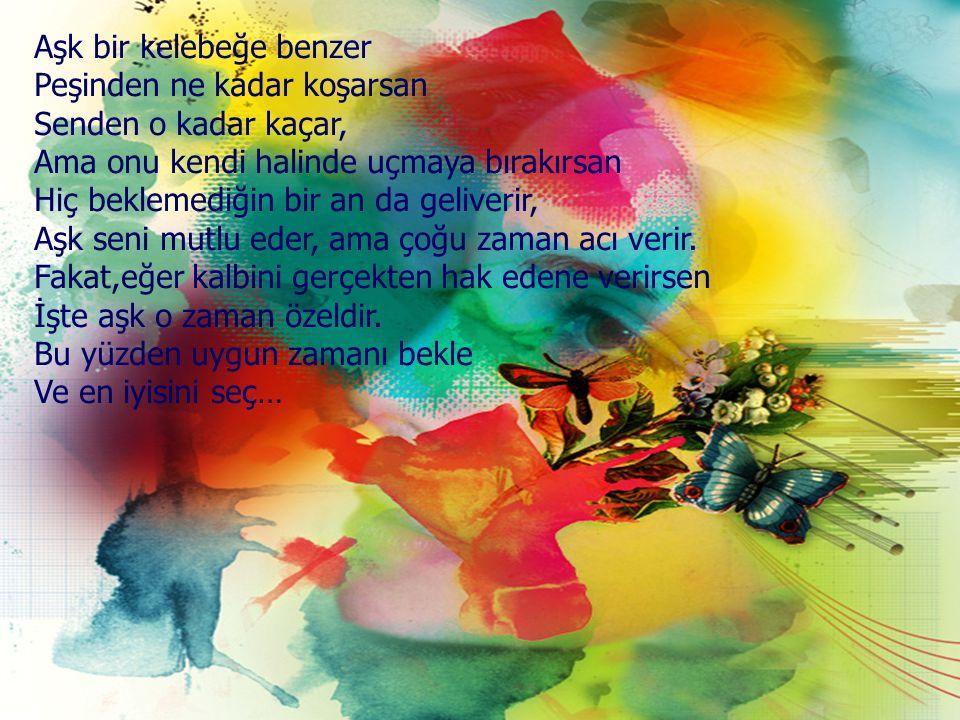 Aşk bir kelebeğe benzer