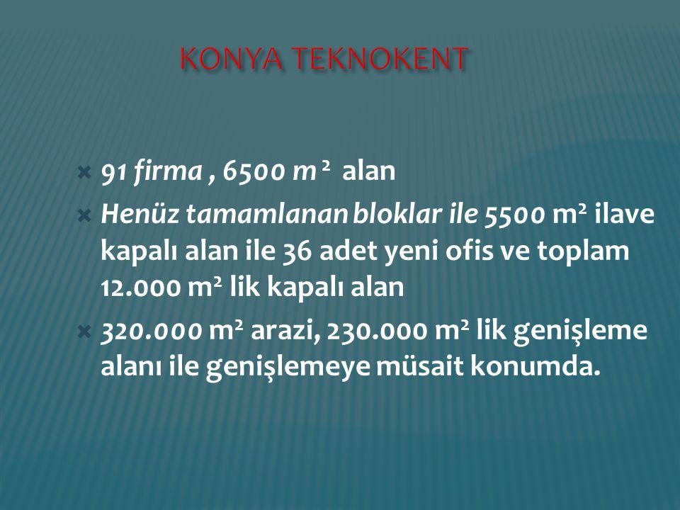 KONYA TEKNOKENT 91 firma , 6500 m 2 alan