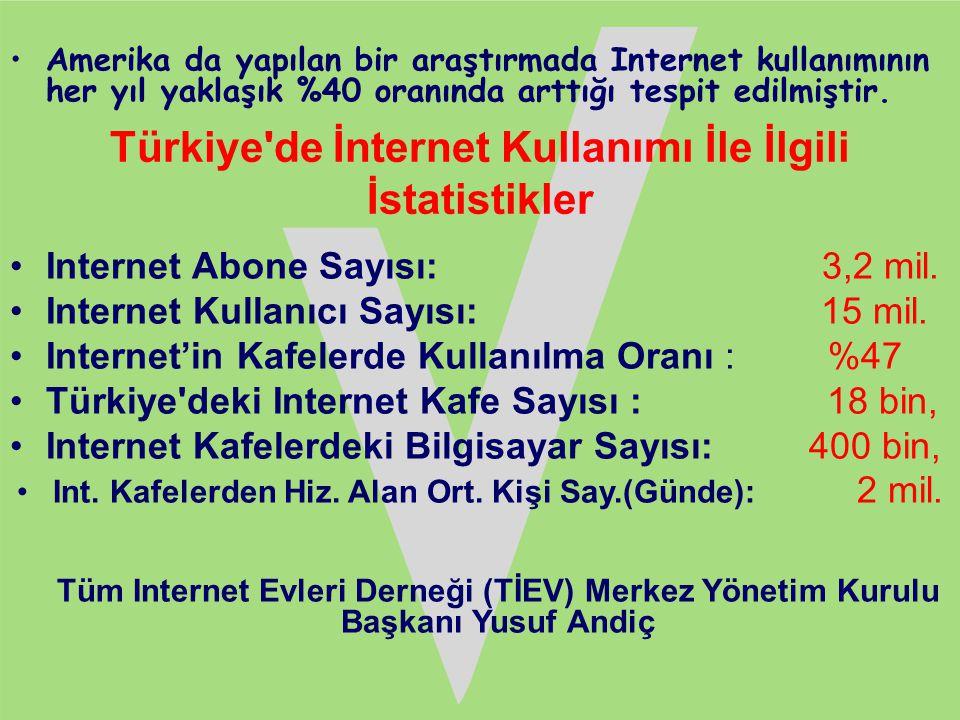 Türkiye de İnternet Kullanımı İle İlgili İstatistikler