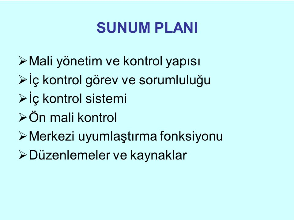 SUNUM PLANI Mali yönetim ve kontrol yapısı