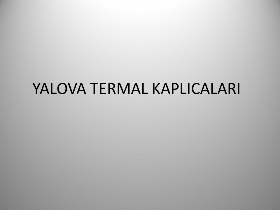 YALOVA TERMAL KAPLICALARI