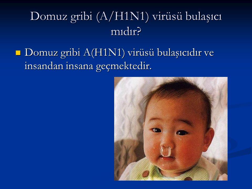 Domuz gribi (A/H1N1) virüsü bulaşıcı mıdır