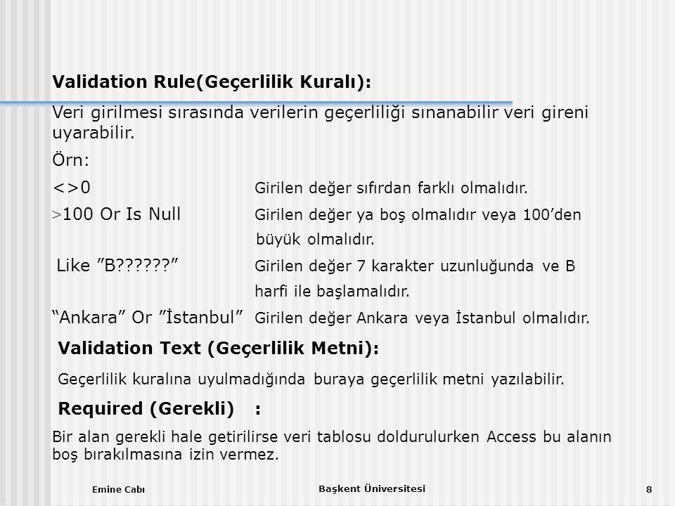 Validation Rule(Geçerlilik Kuralı):