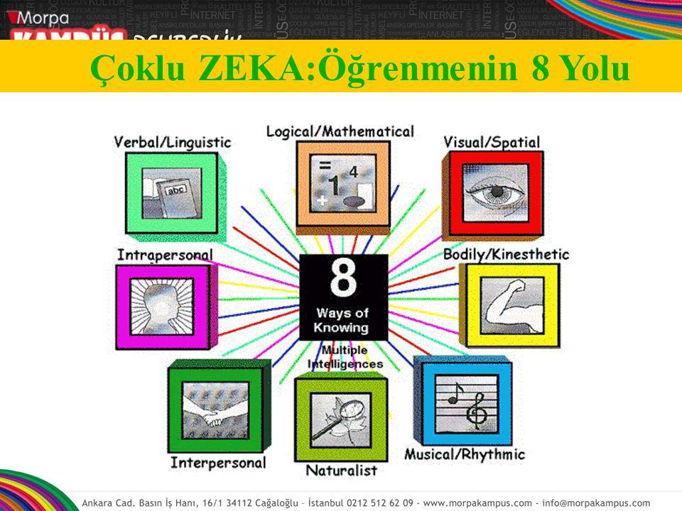 Çoklu ZEKA:Öğrenmenin 8 Yolu