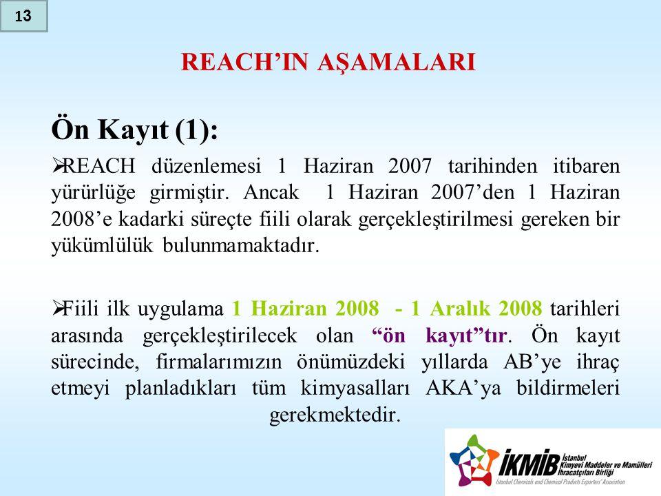 Ön Kayıt (1): REACH'IN AŞAMALARI