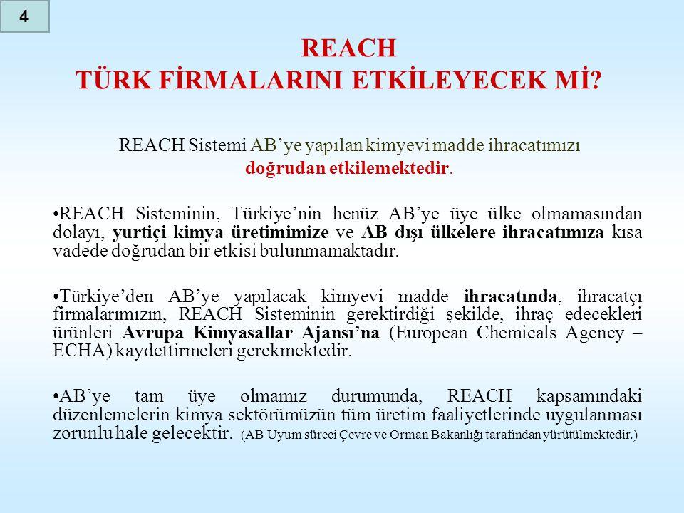REACH TÜRK FİRMALARINI ETKİLEYECEK Mİ