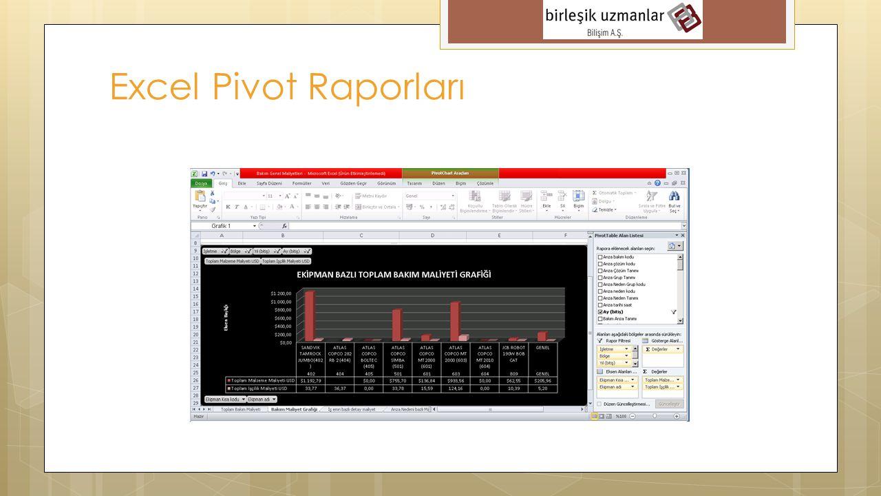 Excel Pivot Raporları