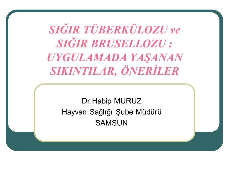 Dr.Habip MURUZ Hayvan Sağlığı Şube Müdürü SAMSUN