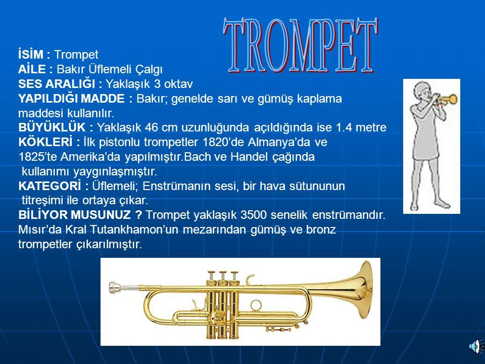 TROMPET İSİM : Trompet AİLE : Bakır Üflemeli Çalgı