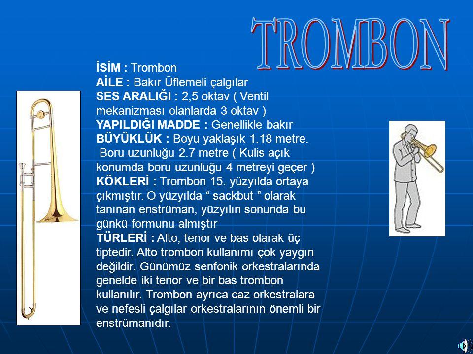 TROMBON İSİM : Trombon AİLE : Bakır Üflemeli çalgılar