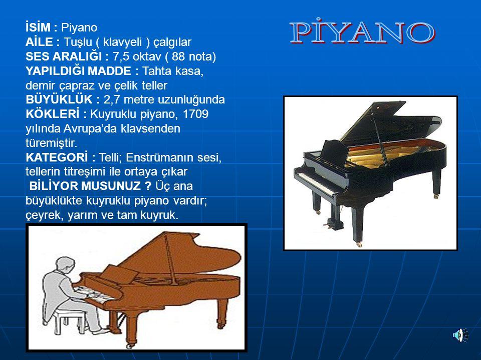 PİYANO İSİM : Piyano AİLE : Tuşlu ( klavyeli ) çalgılar