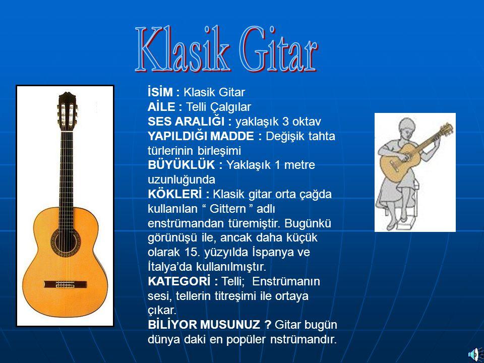 Klasik Gitar İSİM : Klasik Gitar AİLE : Telli Çalgılar