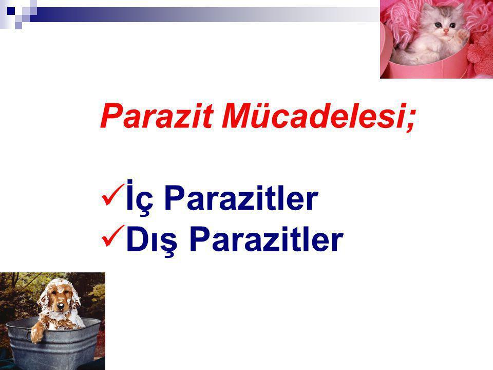 Parazit Mücadelesi; İç Parazitler Dış Parazitler