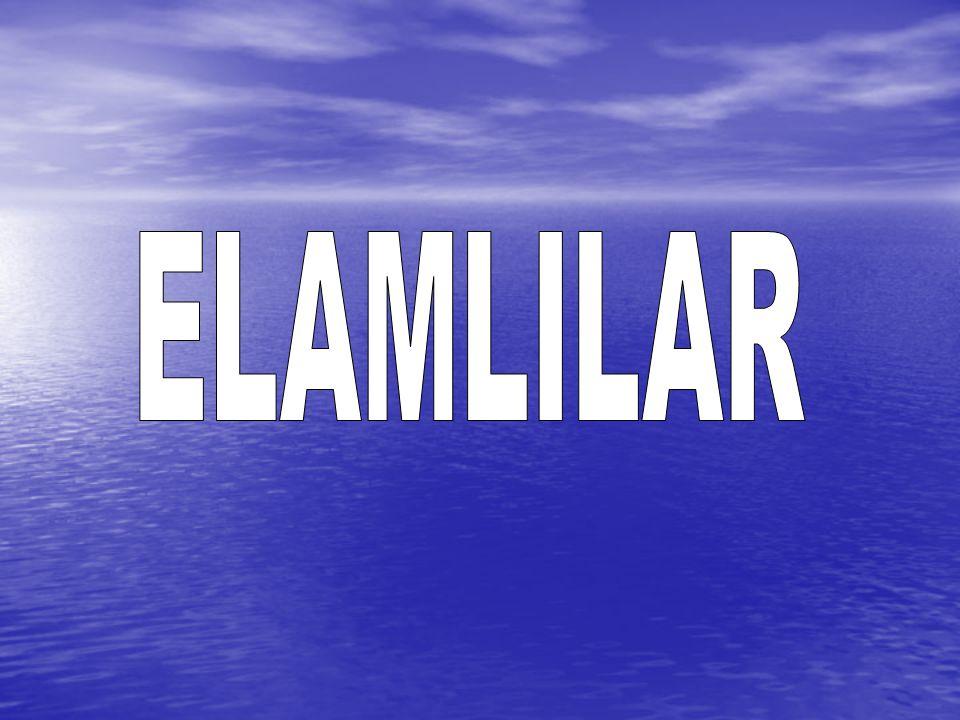 ELAMLILAR