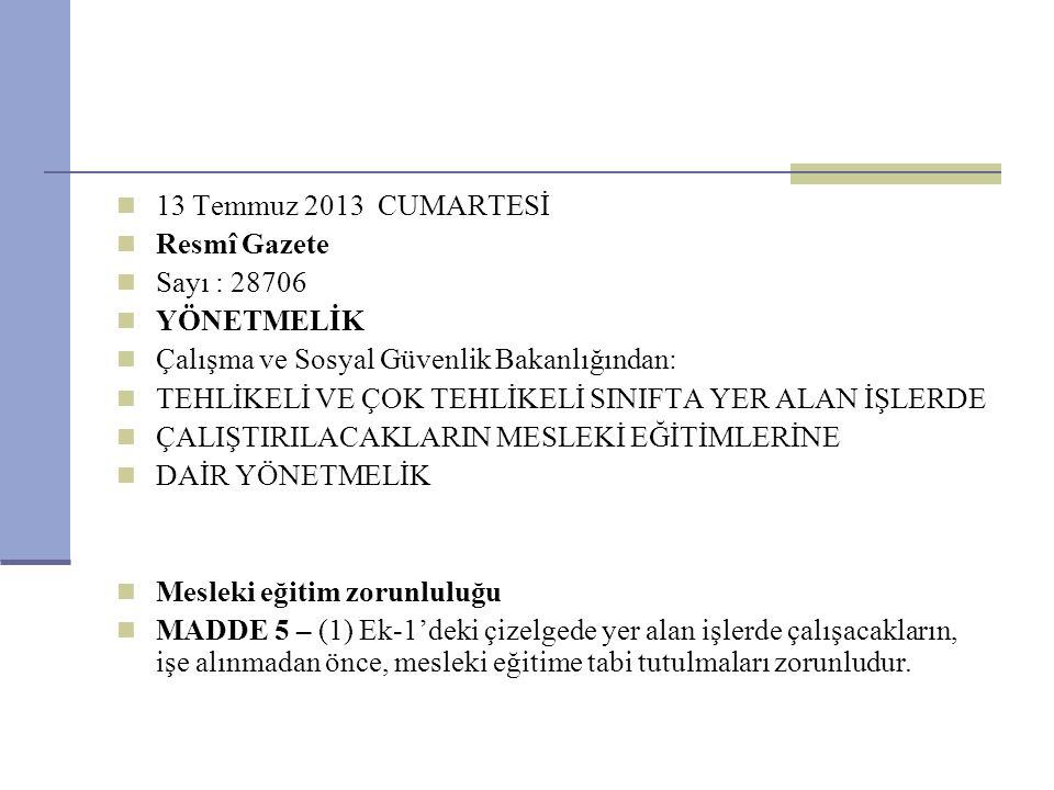 13 Temmuz 2013 CUMARTESİ Resmî Gazete. Sayı : 28706. YÖNETMELİK. Çalışma ve Sosyal Güvenlik Bakanlığından: