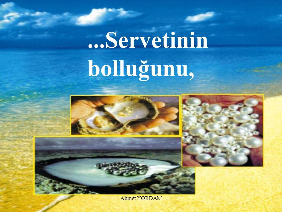 ...Servetinin bolluğunu, Ahmet YORDAM