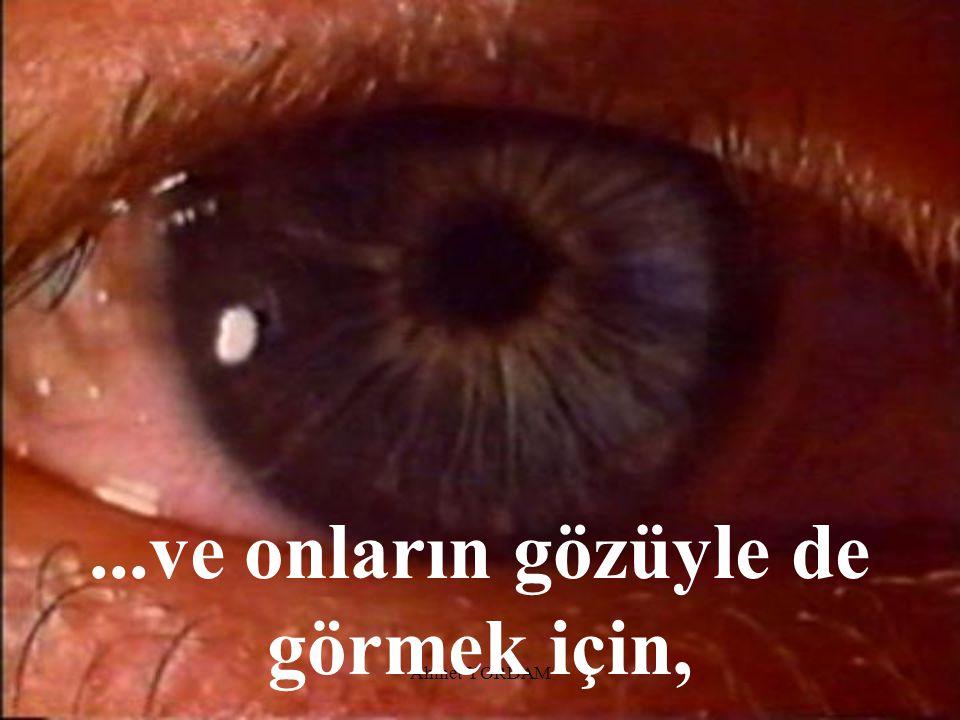 ...ve onların gözüyle de görmek için,