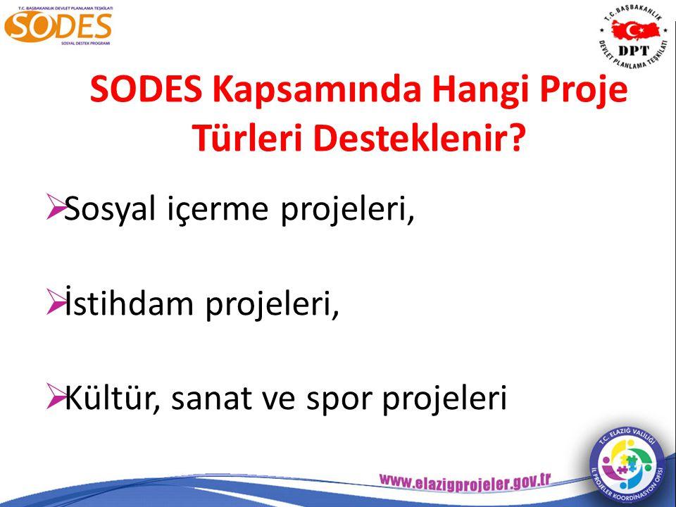 SODES Kapsamında Hangi Proje Türleri Desteklenir