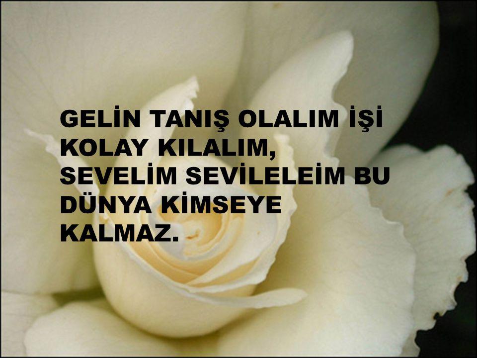GELİN TANIŞ OLALIM İŞİ KOLAY KILALIM,