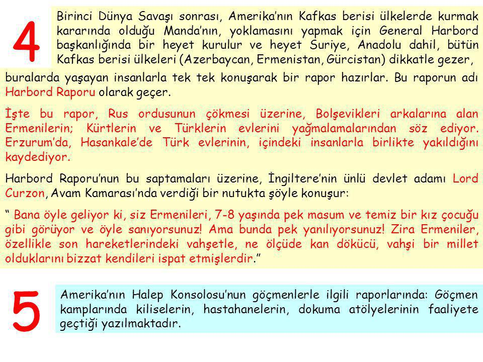 Birinci Dünya Savaşı sonrası, Amerika'nın Kafkas berisi ülkelerde kurmak kararında olduğu Manda'nın, yoklamasını yapmak için General Harbord başkanlığında bir heyet kurulur ve heyet Suriye, Anadolu dahil, bütün Kafkas berisi ülkeleri (Azerbaycan, Ermenistan, Gürcistan) dikkatle gezer,
