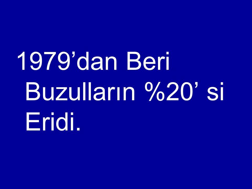 1979'dan Beri Buzulların %20' si Eridi.