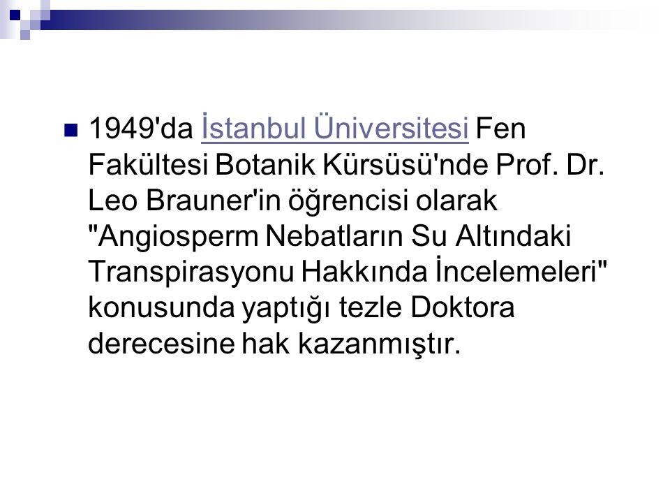 1949 da İstanbul Üniversitesi Fen Fakültesi Botanik Kürsüsü nde Prof