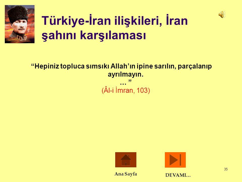 Türkiye-İran ilişkileri, İran şahını karşılaması