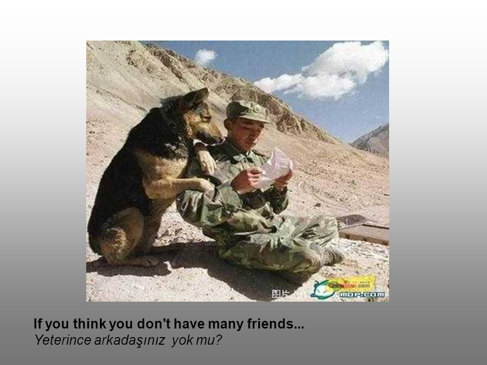 If you think you don t have many friends...