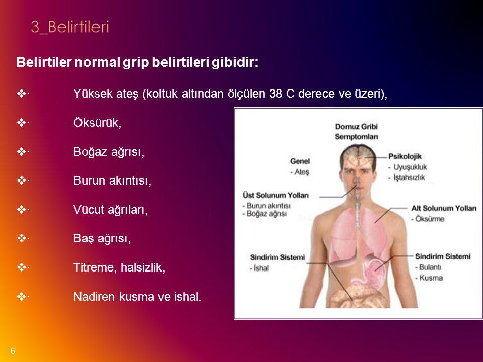 3_Belirtileri Belirtiler normal grip belirtileri gibidir: