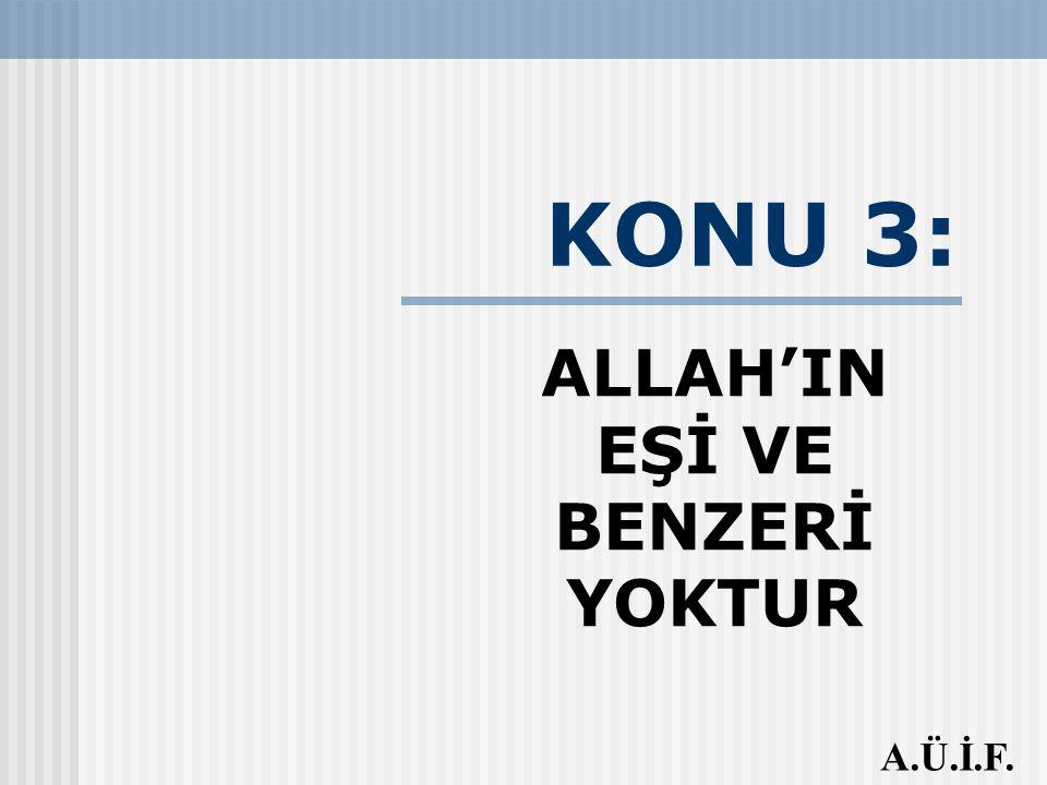 ALLAH'IN EŞİ VE BENZERİ YOKTUR