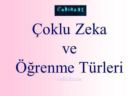 Çoklu Zeka ve Öğrenme Türleri CeBiRsEl.com