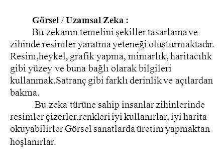 Görsel / Uzamsal Zeka :