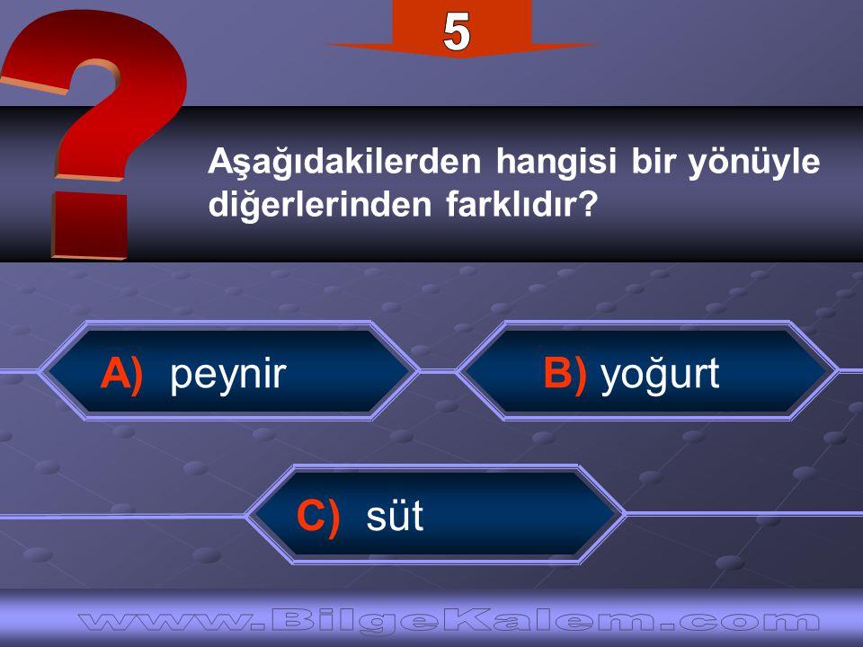 5 A) peynir B) yoğurt C) süt