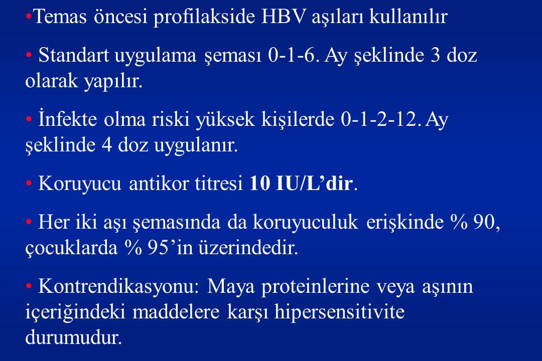 Temas öncesi profilakside HBV aşıları kullanılır