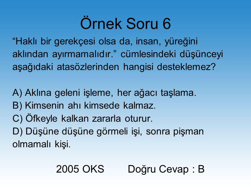 Örnek Soru 6 2005 OKS Doğru Cevap : B