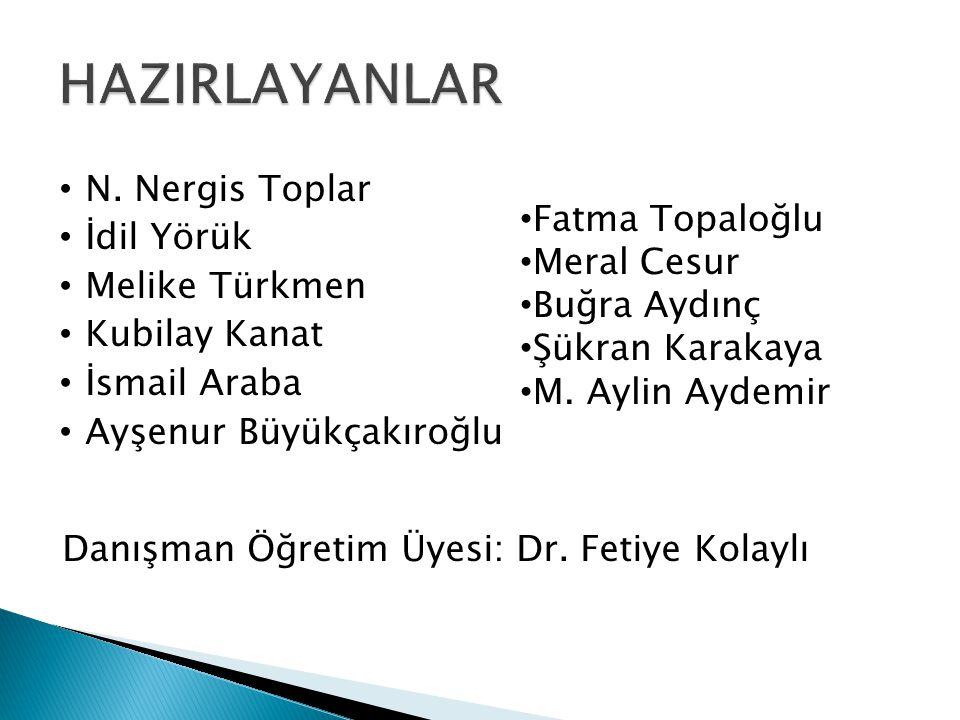 HAZIRLAYANLAR N. Nergis Toplar İdil Yörük Melike Türkmen Kubilay Kanat