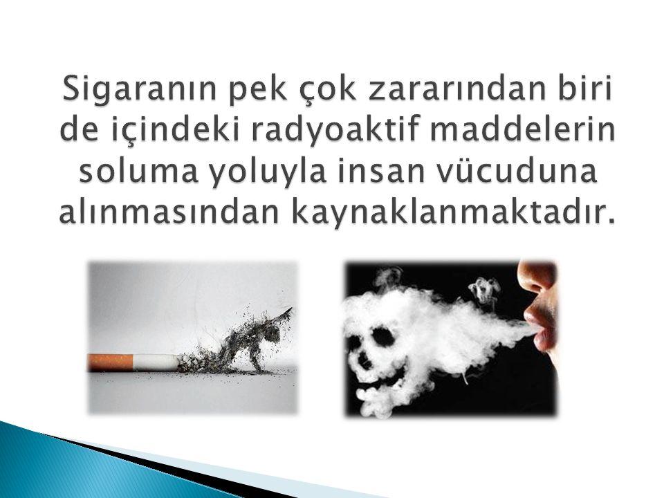 Sigaranın pek çok zararından biri de içindeki radyoaktif maddelerin soluma yoluyla insan vücuduna alınmasından kaynaklanmaktadır.