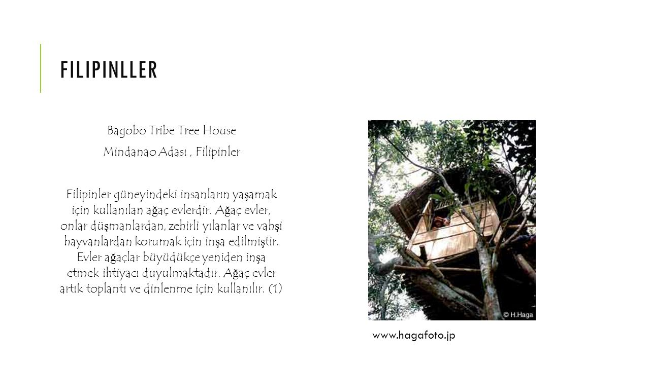 filipinller Bagobo Tribe Tree House Mindanao Adası , Filipinler
