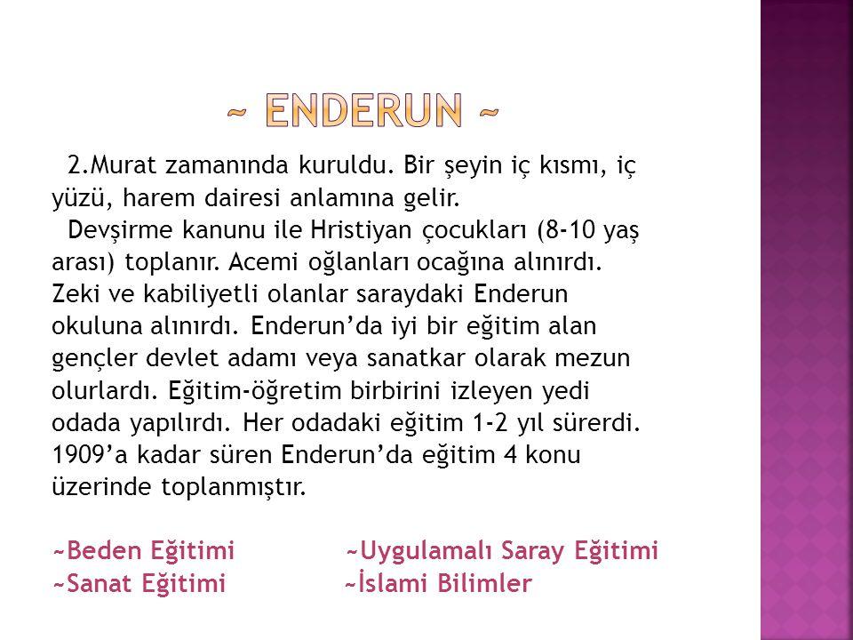 ~ Enderun ~