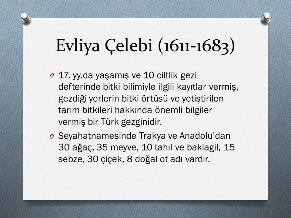 Evliya Çelebi (1611-1683)