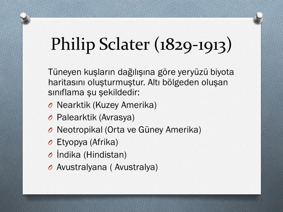Philip Sclater (1829-1913) Tüneyen kuşların dağılışına göre yeryüzü biyota haritasını oluşturmuştur. Altı bölgeden oluşan sınıflama şu şekildedir: