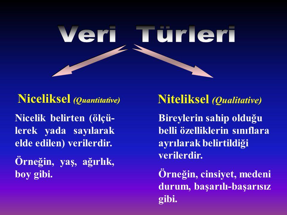 Veri Türleri Niceliksel (Quantitative) Niteliksel (Qualitative)