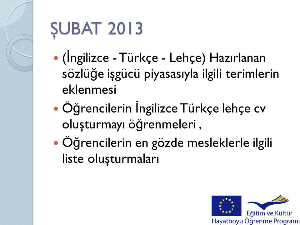 ŞUBAT 2013 (İngilizce - Türkçe - Lehçe) Hazırlanan sözlüğe işgücü piyasasıyla ilgili terimlerin eklenmesi.
