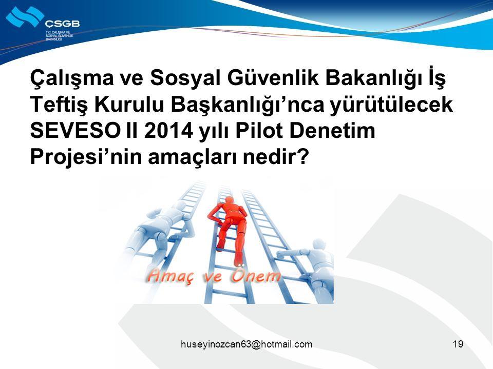 Çalışma ve Sosyal Güvenlik Bakanlığı İş Teftiş Kurulu Başkanlığı'nca yürütülecek SEVESO II 2014 yılı Pilot Denetim Projesi'nin amaçları nedir