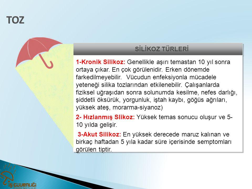 TOZ SİLİKOZ TÜRLERİ.