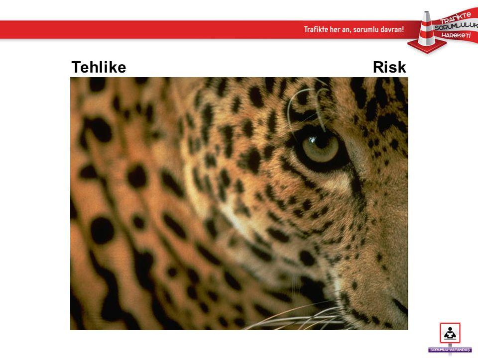 Tehlike Risk