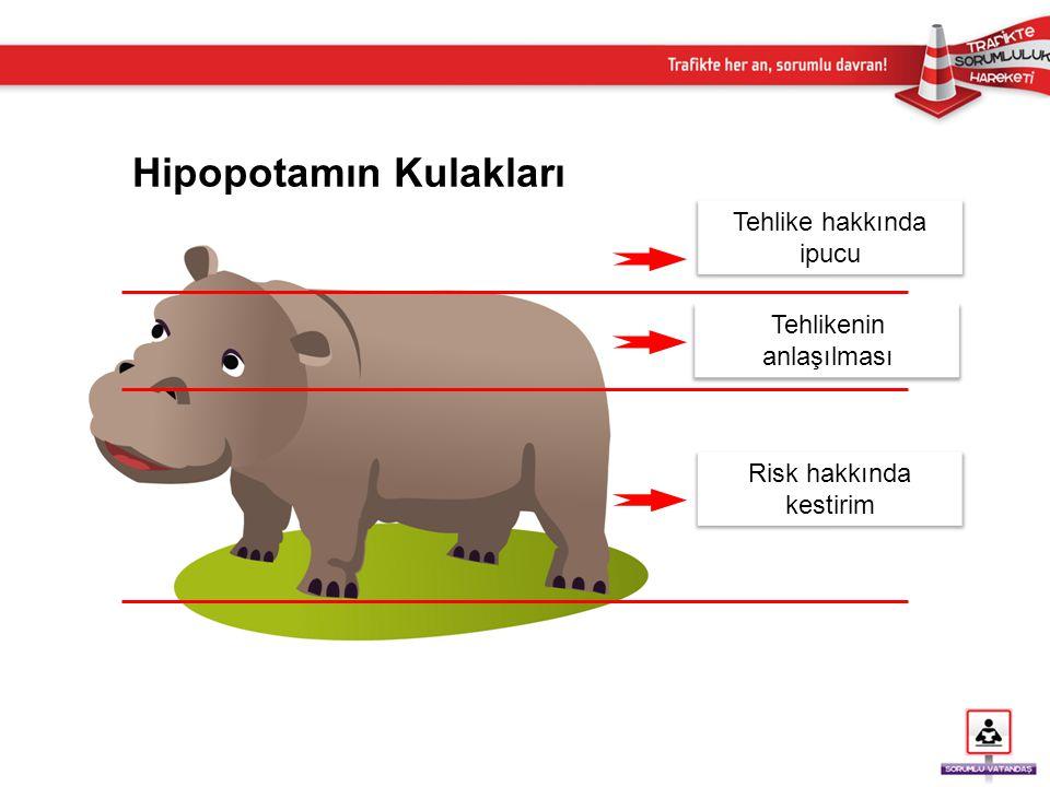 Hipopotamın Kulakları