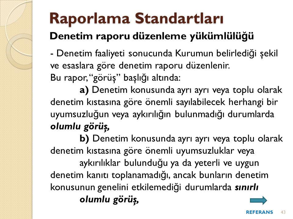 Raporlama Standartları