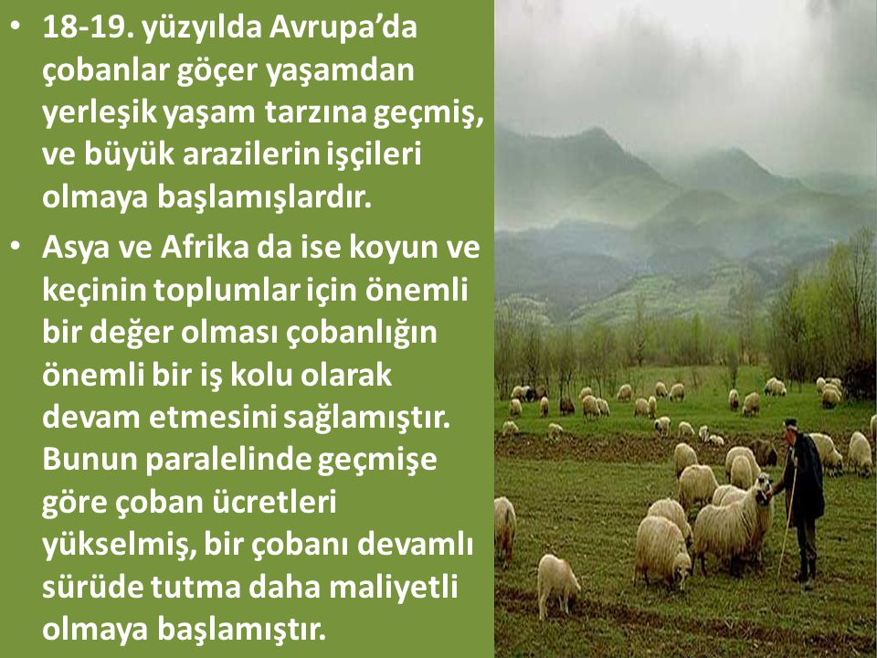 18-19. yüzyılda Avrupa'da çobanlar göçer yaşamdan yerleşik yaşam tarzına geçmiş, ve büyük arazilerin işçileri olmaya başlamışlardır.
